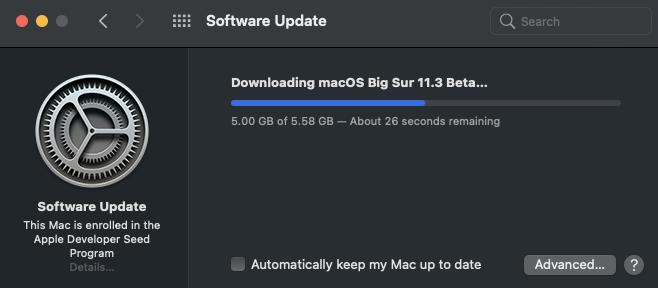 11.3 beta